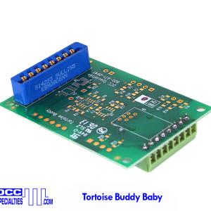 tortoise_buddy_baby